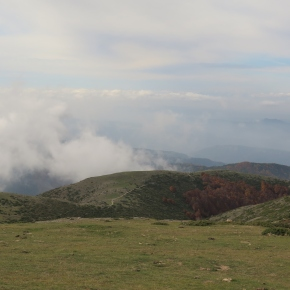 Ruta 28. Coll de Bordoriol al Matagalls i per les fonts Llops iMosquits.