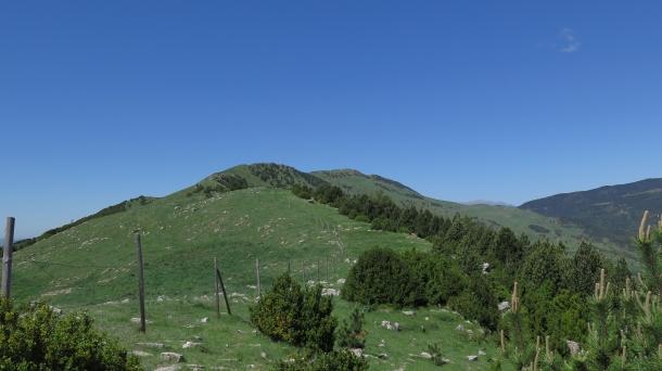 Carena Serra Cavallera